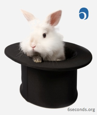 rabbit-hat