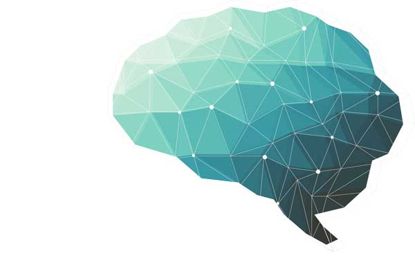 Learning About Learning & the Brain – Interview with Neuroscientist Mary-Helen Immordino-Yang